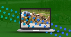 Wirtualne sporty w zakładach bukmacherskich